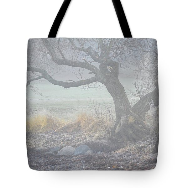 Tote Bag featuring the photograph Blanket Of Fog by Randi Grace Nilsberg