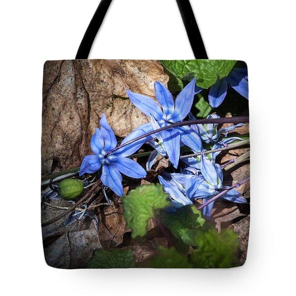 Blending Time - Tote Bag