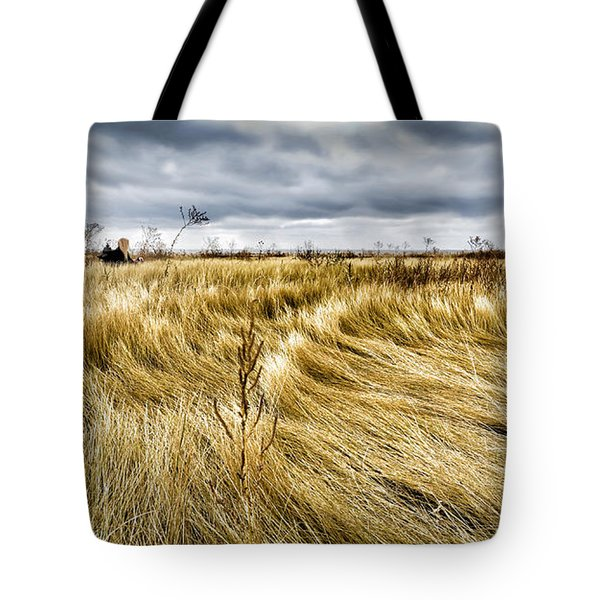Blonde On Blonde Tote Bag