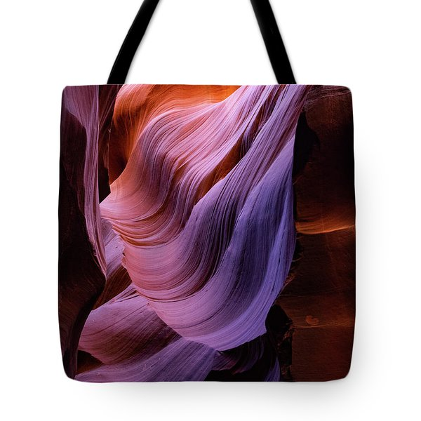 The Body's Earth 1 Tote Bag