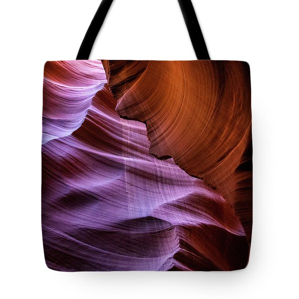 The Body's Earth 2 Tote Bag