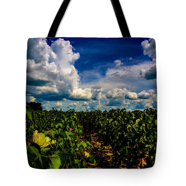 Blooming Cotton  Tote Bag