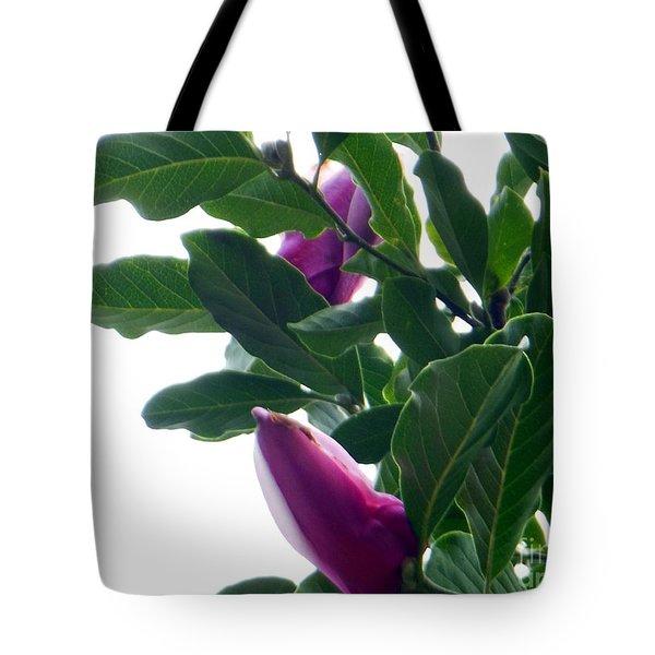Blossoming Magnolias Tote Bag