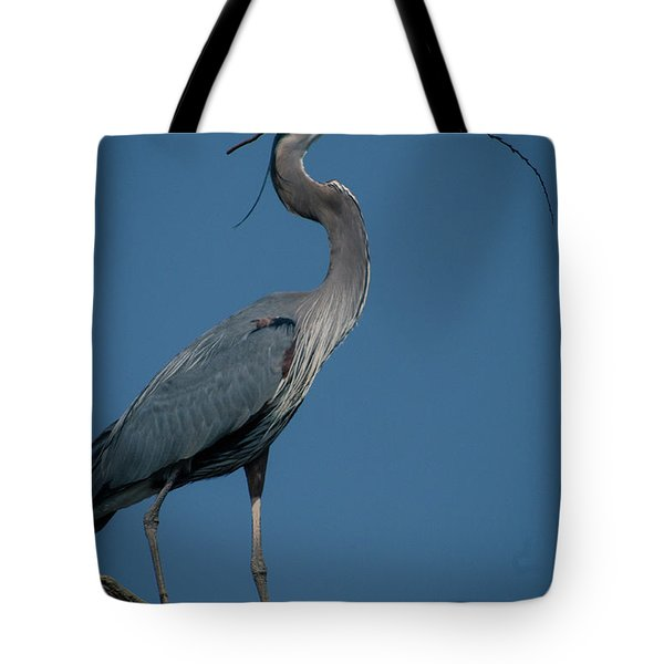 Blue Heron 2011-0322 Tote Bag