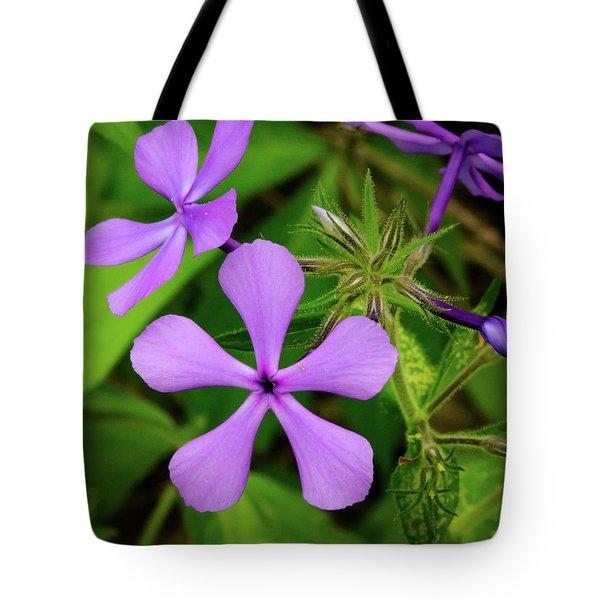 Blue Phlox Tote Bag