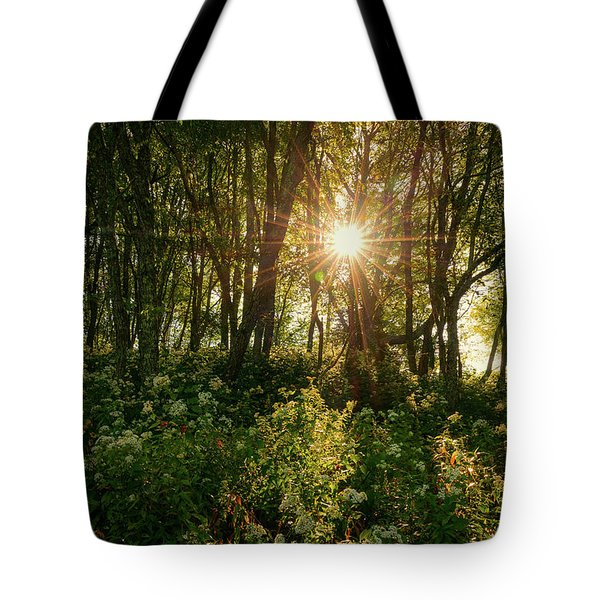 Blue Ridge Parkway - Last Of Summers Light, North Carolina Tote Bag