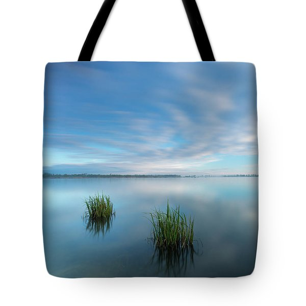 Blue Whirlpool Tote Bag