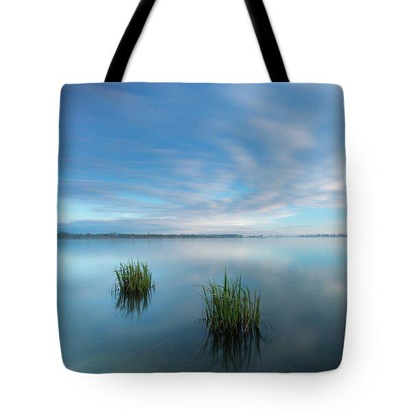 Blue Whirlpool Tote Bag