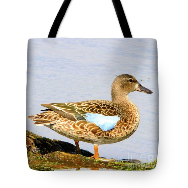 Blue-winged Teal Female Duck Tote Bag