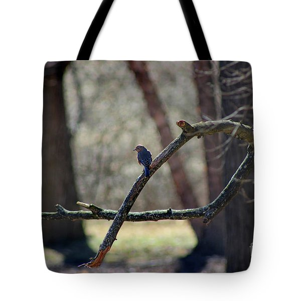 Bluebird, Bluebird, Sing To Me Tote Bag