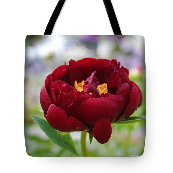 Bold Garnet Tote Bag