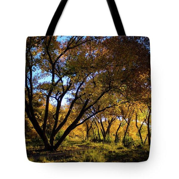 Bosque Color Tote Bag