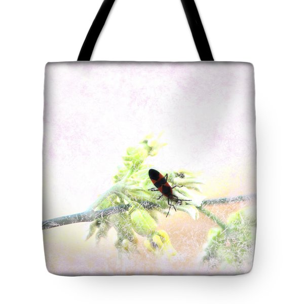 Boxelder Bug In Morning Haze Tote Bag