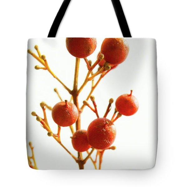 Brazilian Pepper 0482 Tote Bag