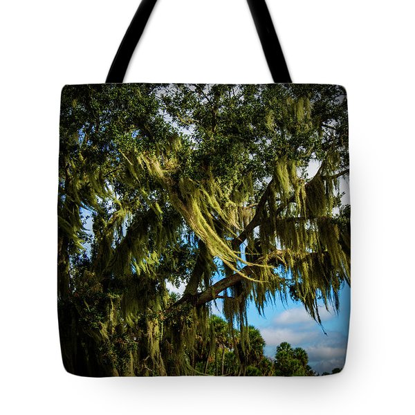 Breezy Florida Day Tote Bag