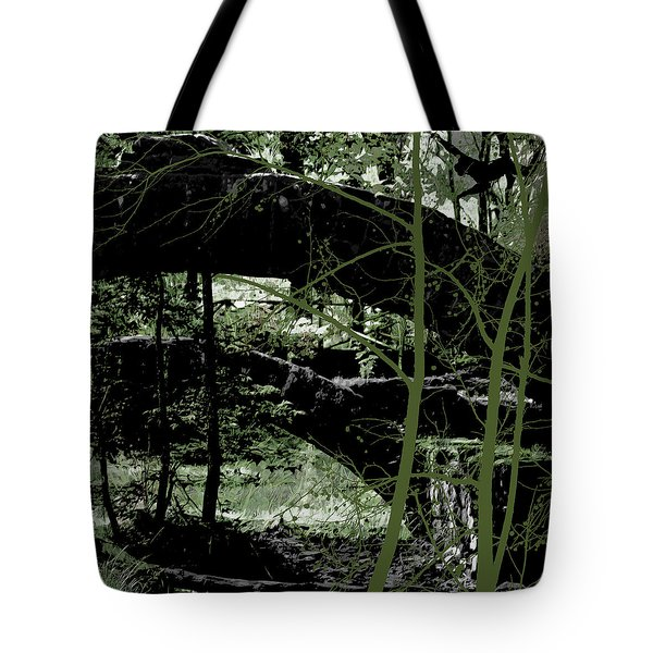 Bridge Vi Tote Bag