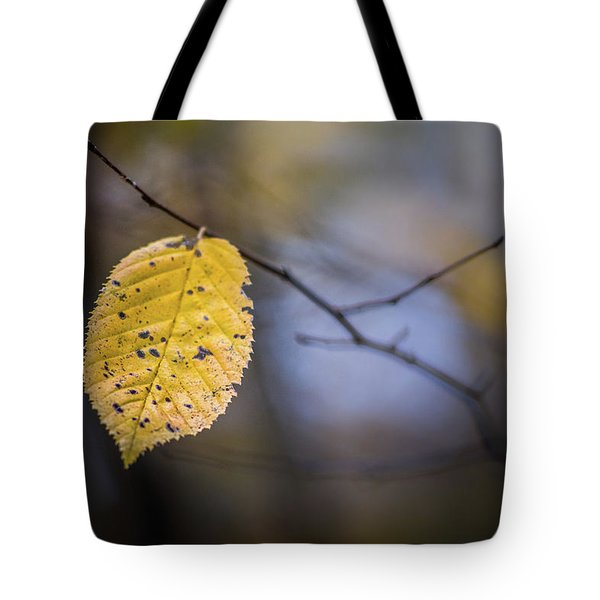 Tote Bag featuring the photograph Bright Fall Leaf 1 by Michael Arend