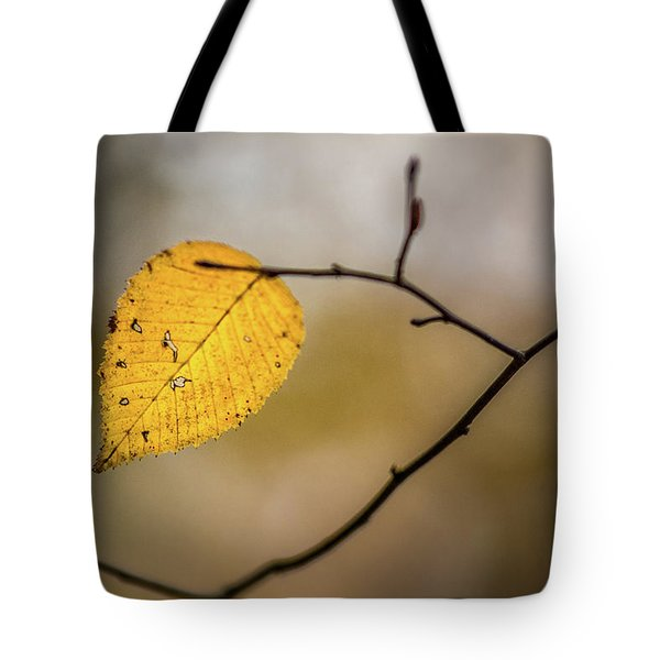 Tote Bag featuring the photograph Bright Fall Leaf 10 by Michael Arend