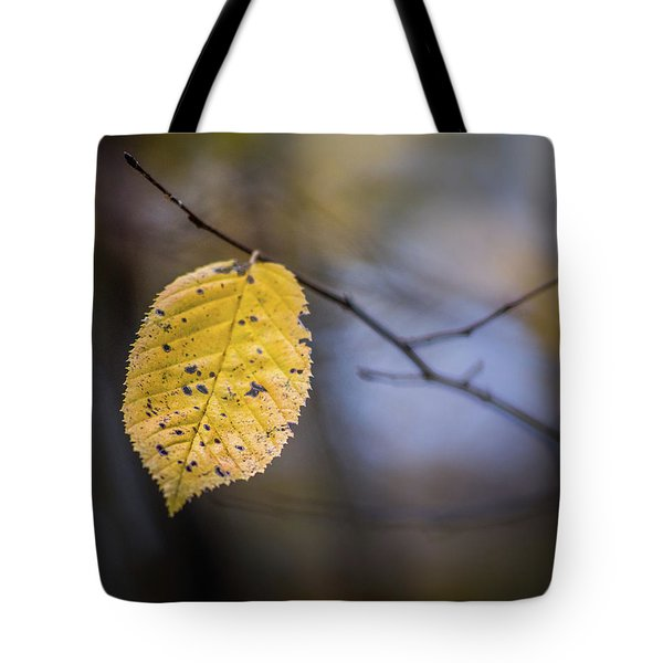 Tote Bag featuring the photograph Bright Fall Leaf 3 by Michael Arend