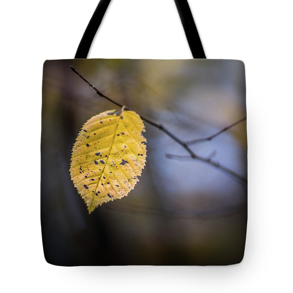 Tote Bag featuring the photograph Bright Fall Leaf 5 by Michael Arend