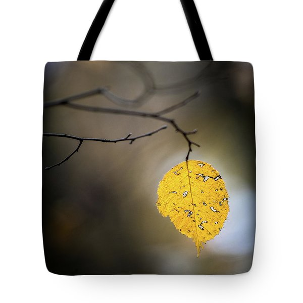 Tote Bag featuring the photograph Bright Fall Leaf 7 by Michael Arend