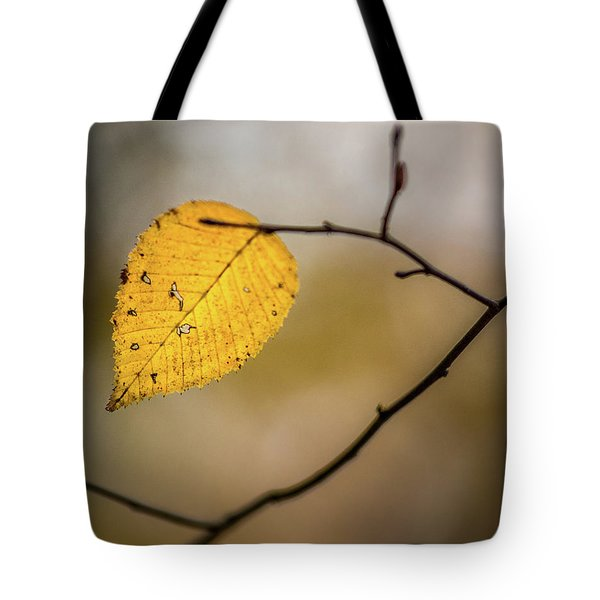 Tote Bag featuring the photograph Bright Fall Leaf 9 by Michael Arend