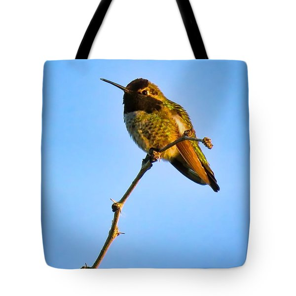 Bright Little Buddy Tote Bag