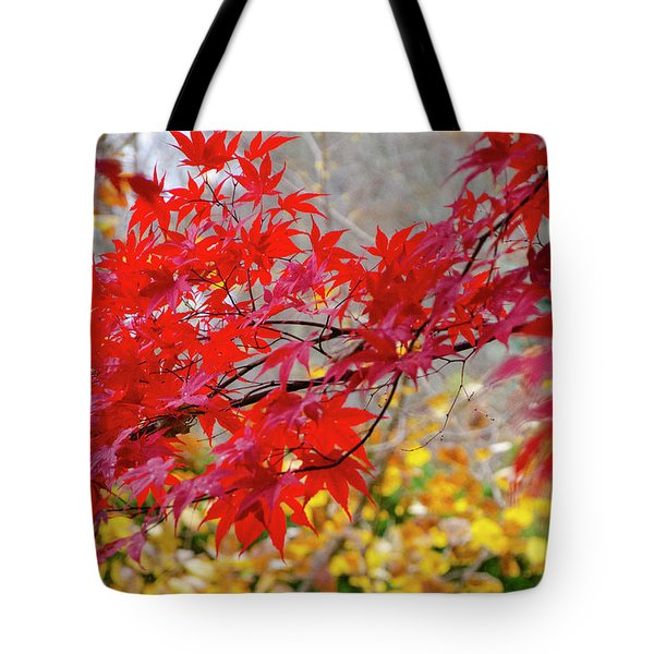 Brilliant Fall Color Tote Bag