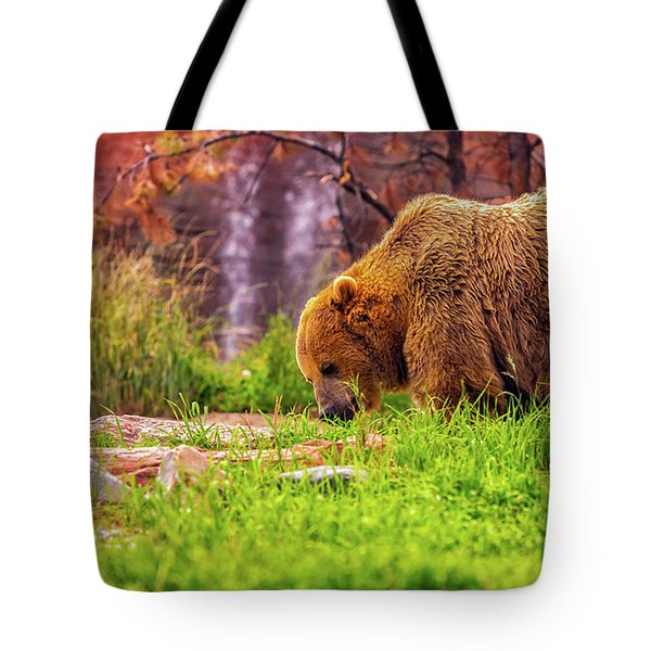 Brisk Walk Tote Bag