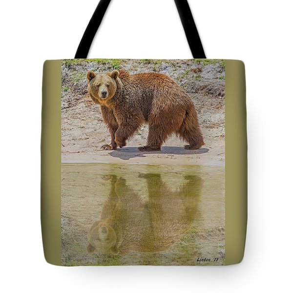 Brown Bear Reflection Tote Bag