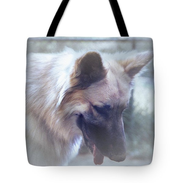 Bruce Looking Down Tote Bag