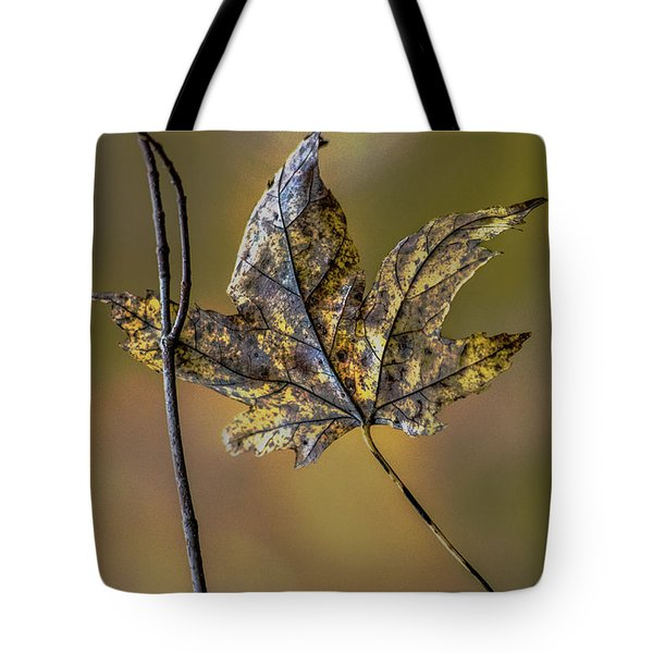 Tote Bag featuring the photograph Buddies by Michael Arend