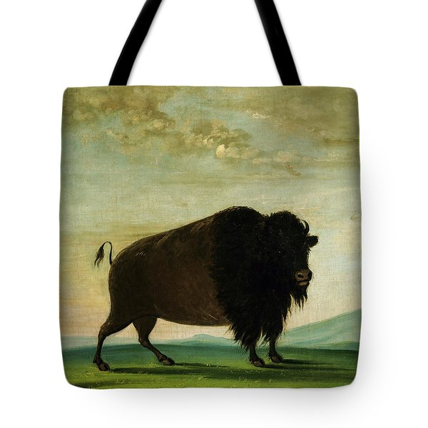 Buffalo Cow, Grazing On The Prairie, 1833 Tote Bag