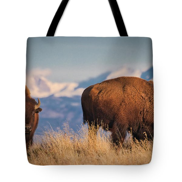 Buffalo Grazing At Dawn Tote Bag
