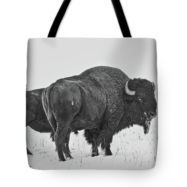 Buffalo In The Snow Tote Bag