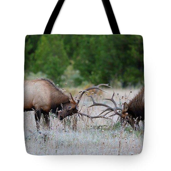 Bull Elk Battle Rocky Mountain National Park Tote Bag