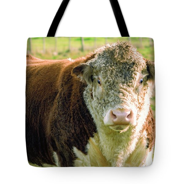 Bull In The Country Side Of Tasmania. Tote Bag