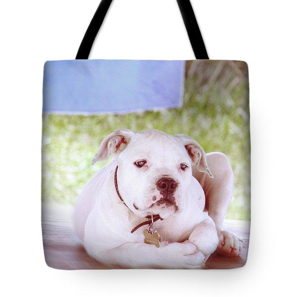 Bulldog Rana Art 80 Tote Bag
