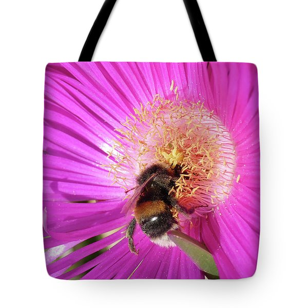 Bumblebee Collecting Pollen From Ice Plant Tote Bag