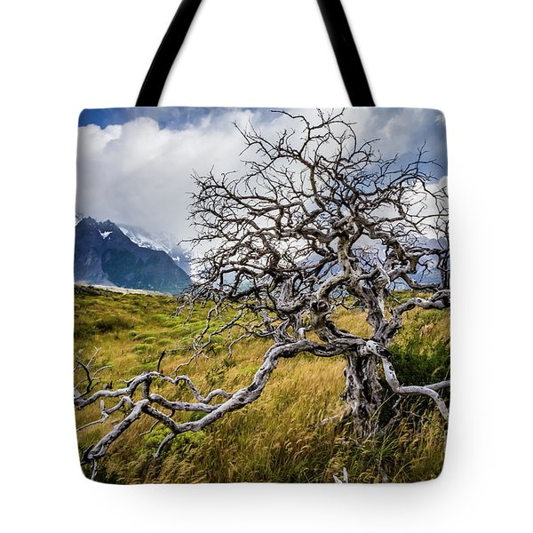 Burnt Tree, Torres Del Paine, Chile Tote Bag