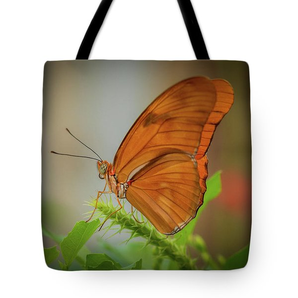 Butterfly, Delicate Wings... Tote Bag