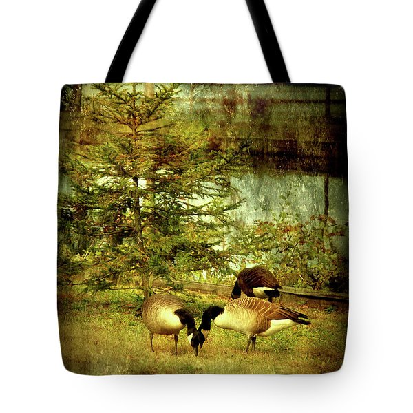 By The Little Tree - Lake Carasaljo Tote Bag