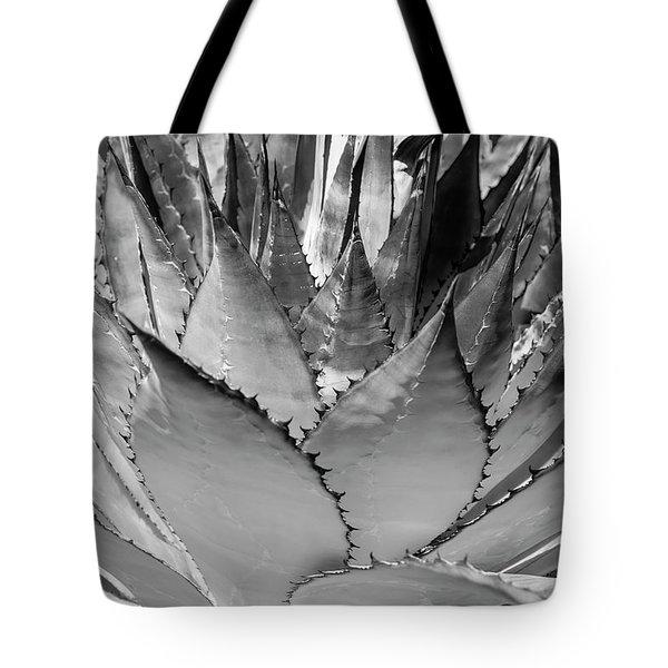 Cactus 3 Tote Bag
