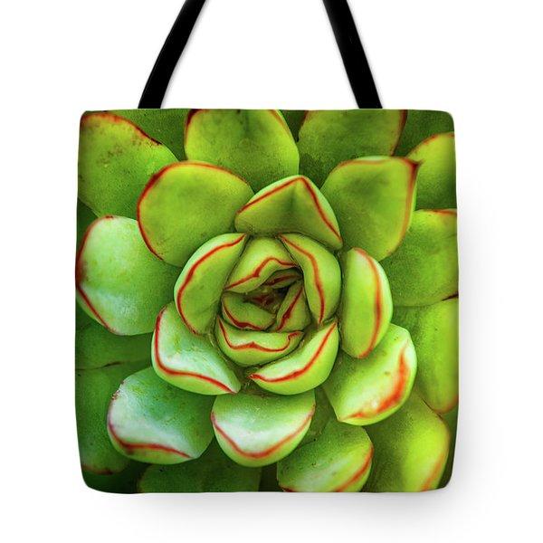 Cactus Plant Tote Bag