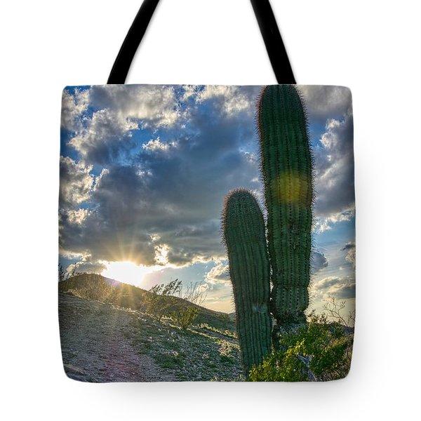 Cactus Portrait  Tote Bag
