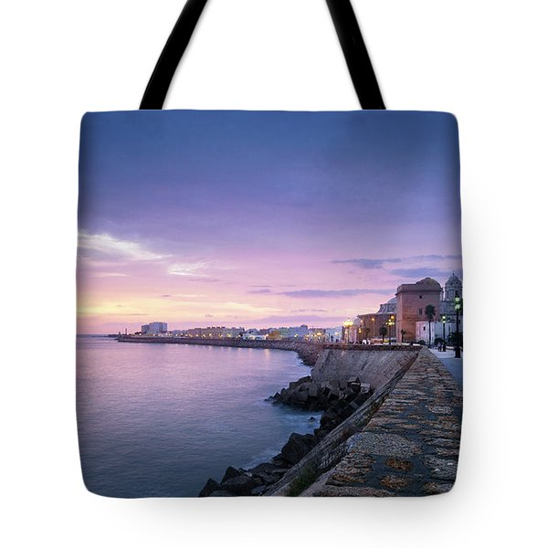 Tote Bag featuring the photograph Cadiz Skyline And Cathedral by Pablo Avanzini