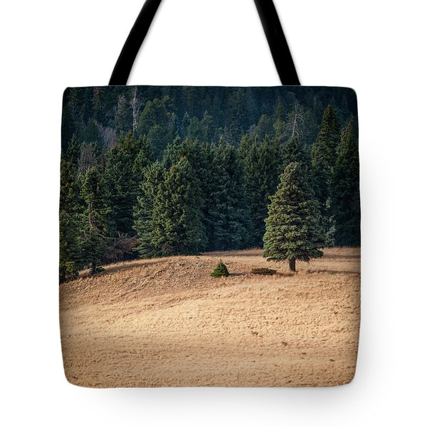 Tote Bag featuring the photograph Caldera Edge by Jeff Phillippi