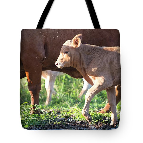 Tote Bag featuring the photograph Calf by Rob D Imagery