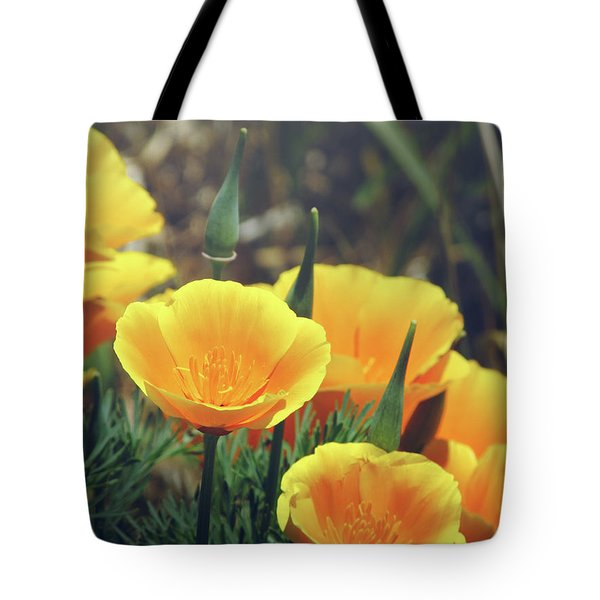 Californian Poppies In The Patagonia Tote Bag