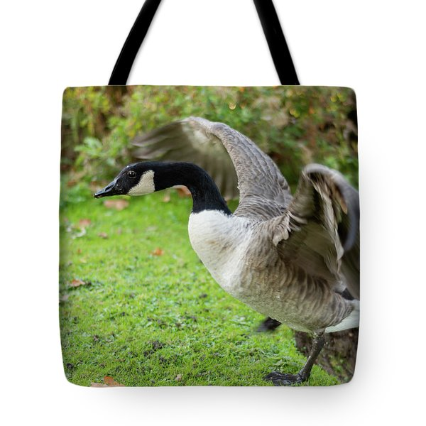 Tote Bag featuring the photograph Canadian Goose With Wings Stretched by Scott Lyons